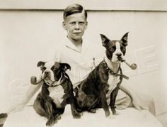 BOY ANTIQUE BOSTON TERRIER DOG PIPE VINTAGE 1933 CANINE PHOTO *CANVAS* ART PRINT | eBay