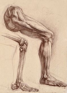 Exceptional Drawing The Human Figure Ideas. Staggering Drawing The Human Figure Ideas. Drawing Legs, Body Drawing, Life Drawing, Drawing Faces, Hand Drawings, Male Figure Drawing, Figure Drawing Reference, Anatomy Reference, Pose Reference