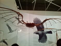 A Estrambólica Arte = ciência + tecnologia + arte: Leonardo da Vinci – Transformar o movimento