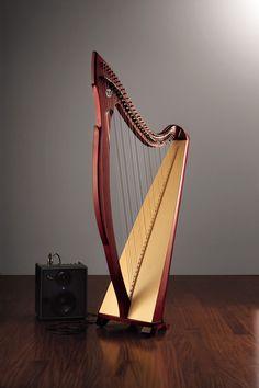 Egan Professional Celtic Harp: Salvi