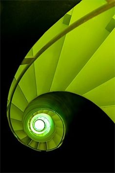 This is shade of green really shows how green often represents life.