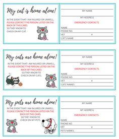 #CA Joke Fake Scratch Cards 3 per card