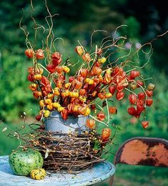 .Autumn for me here in the Southern Hemisphere <3