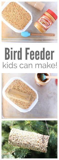 Kids Crafts: DIY Bird Feeder