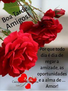 Flowers, Plants, Good Night Sweet Dreams, Bffs, Buen Dia, Messages, Friendship, Dios, Places