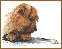 """Norfolk Terrier """"Frog"""", a Limited Edition Print by Martha Van Loan, signed and serially numbered. This is a favorite."""