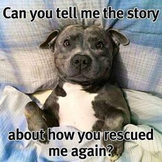 yes... and you never have to worry this is your forever home ~<3~ Love this!