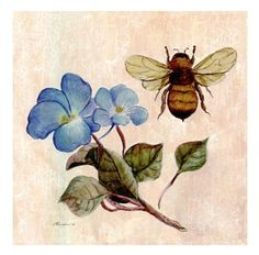 Maybe have the tattoo look like an old botanical print, but with apple blossoms or roses instead?