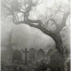 A nice atmospheric walk through a cemetery shrouded in mist- what could possibly go wrong ?