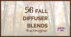 Here are no less than FIFTY-SIX fall essential oil diffuser blends for your enjoyment. Fall diffuser blends make it smell good around the home!