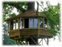 tree houses for adults | Tree House Designs – The Dream House of All Kids | The Ark