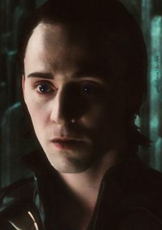 Loki looking adorable <--- Oooo! He's so cute and innocent and adorable and not crazy yet!