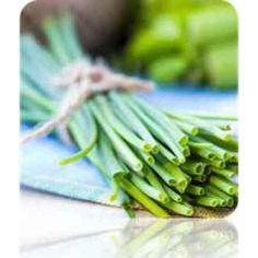 Chives - SeedsNow.com