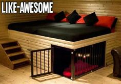 Cool bed and dog bed