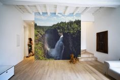 Rain Forest Waterfall Wall Mural