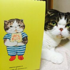 Gustave the cat. Cute and funny caricature.