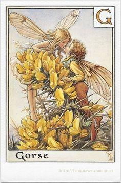 A Flower Fairy Alphabet #1 (시슬리 메리바커) : 네이버 블로그