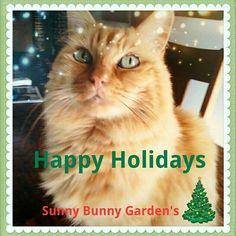 Happy Holidays!! www.etsy.com/shop/sunnybunnygardens #organicsoap, #handmadesoap, #etsystore #etsygifts #etsy #naturalsoap #soapbaskets