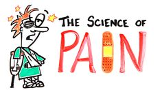 Science Says Videos: The Science of Pain
