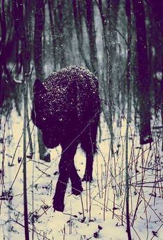 """""""Complain none-too-much of being a black sheep 'fore I might turn my dark ear to hear your bleats..."""""""