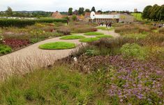 Piet Oudolf -droping lane garden, bruton somerset