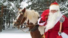 Vánoční_tapety_178