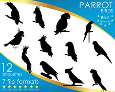 Hey, I found this really awesome Etsy listing at https://www.etsy.com/listing/501137018/12-silhouettes-parrot-bird-birds-dxf-eps