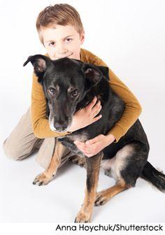 Google Image Result for http://www.nylabone.com/dog-house-chatter/wp-content/uploads/2011/11/hugging_senior_dog.jpg