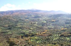 View of the Amiata from Montegiovi GR Tuscany
