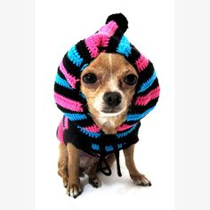 Funny Cute Chihuahua Dog Hoodie Sweater Crochet Knit by myknitt, $33.00
