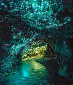 Waitomo Glow Caves, New Zealand