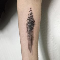 pine tree 나무들 #pinetreetattoo #treetattoo #blacktattoo #tattoowork #tattoo…
