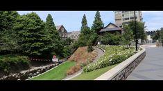 Dunedin Tour and University of Otago Campus, New Zealand New Zealand, University, Tours, Mansions, House Styles, Music, Travel, Home, Musica