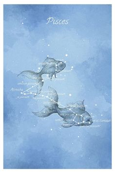 Astronomy art Pisces constellation fish by LaPetiteMascarade