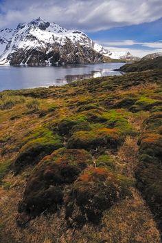 Beautiful Antarctica.