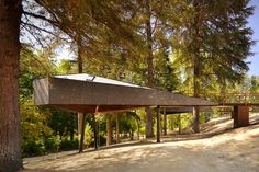 Tree Snake House / Rebelo de Andrade Architects | AA13 – blog – Inspiration – Design – Architecture – Photographie – Art