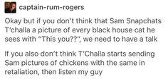 Samchalla t'cham t'chalon royalfalcon black falcon marvel mcu avengers Sam Wilson the falcon King t'challa of Wakanda black panther