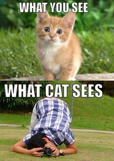 Funny Pictures Of The Day – 125 Pics