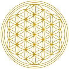 Die Ordnung der Schöpfung (Heilige Geometrie, Blume und Frucht des Lebens…