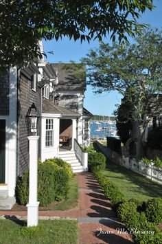 Absolutely magical!  Just don't fall down in the middle of the street like I did. Everyone is so nice they came running to help me!  Edgartown, Martha's Vineyard