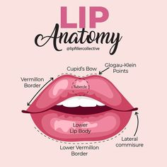 Details Below: . Cheek Fillers, Facial Fillers, Botox Fillers, Dermal Fillers, Facial Aesthetics, Medical Aesthetics, Botox Quotes, Hyaluronic Acid Lips, Aesthetic Dermatology