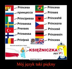Mój język taki piękny –  Princesa -/ Princesanpnnuecca , Prinses-Principessa -/ PrinceshePrinsessa _/ PrinceznaPrenses , PrincesePrinsessa -/ PrinzessinPrintesa / PrincessKSIĘZNICZKAPFF! Stupid Funny Memes, Wtf Funny, Filipino Memes, Learn Polish, Polish Words, Polish Memes, Clean Memes, Political Memes, Good Jokes