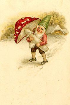 Image result for red polka dot mushrooms