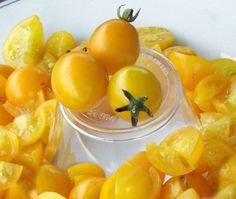 Nikolayev Yellow Cherry