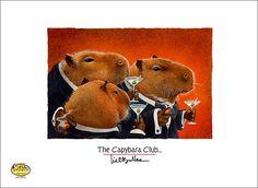 Will Bullas small art print the Capybara Club...
