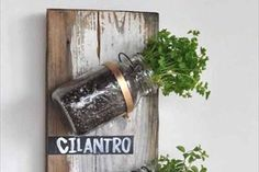 If you don't have a yard to plant in, a simple wall of the patio will do.  Hang a sturdy board or plank, and attach Mason Jars to it with pipe clamps.  Plant the herbs in the Mason Jar, and you've got a vertical garden that takes up hardly any space at all!