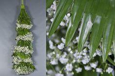 Green Inspiration #Livistonia www.adomex.nl Green powers