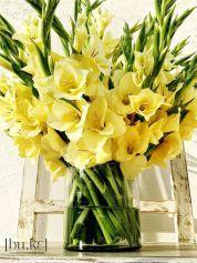 Beautiful Gladiolus Flower Arrangements For Home Decorations 35