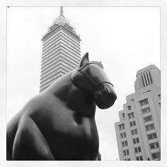Botero's horse, Bellas Artes. Mexico City