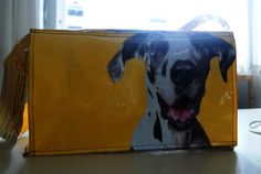 Messenger bag created out of an empty dog food bag.